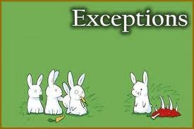 Exceptions image